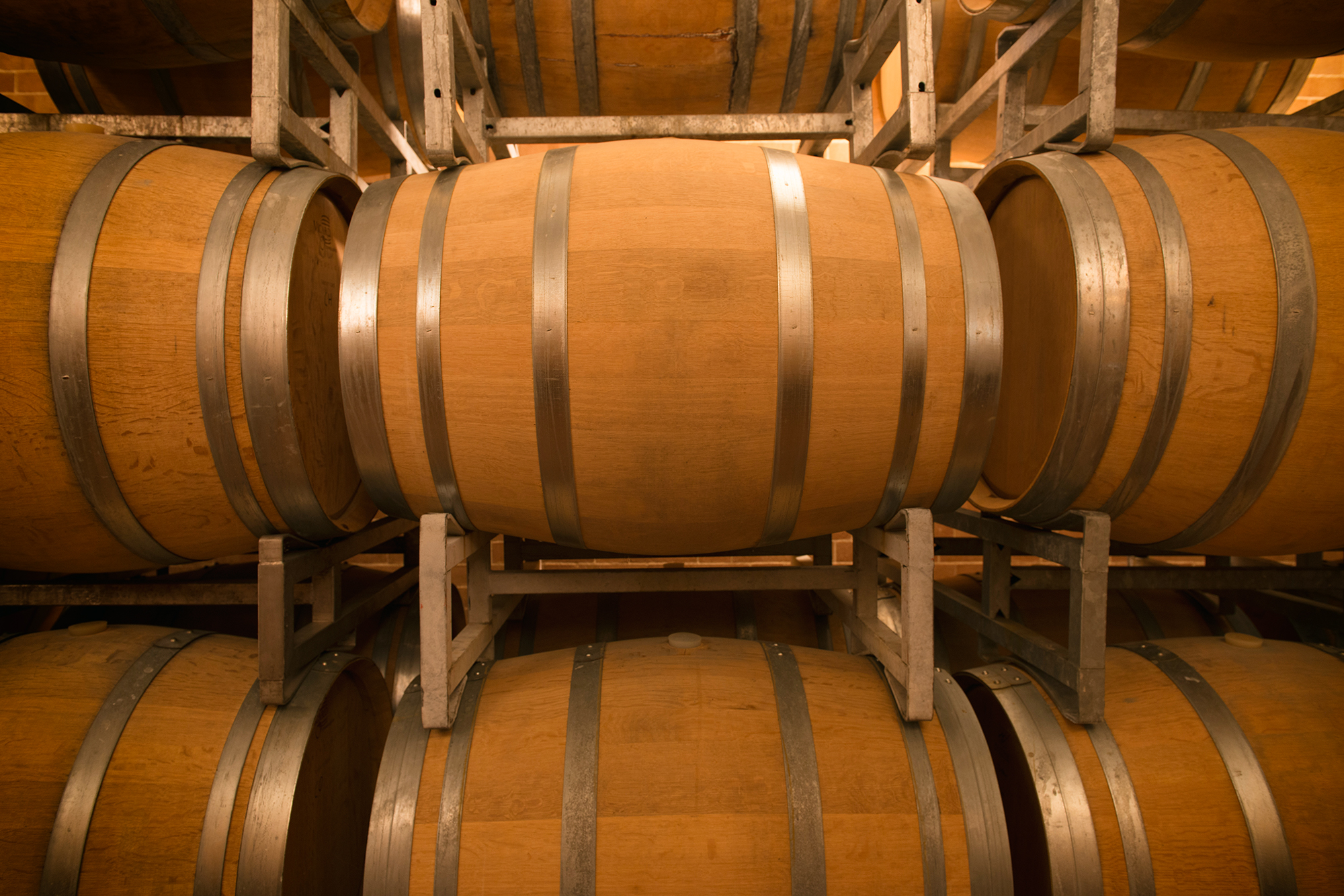 The kins of wines: Barolo and Barbaresco